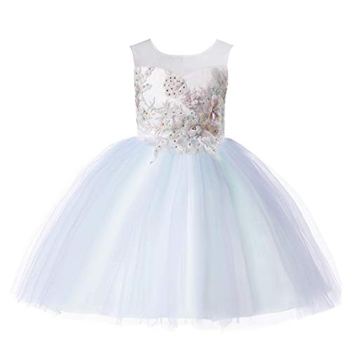 Weileenice 2-14T Girls Costume Cosplay Dress Rainbow Tulle 3D Embroidery Beading Princess Dresses (2-3Years, Mint - Old Costume Fashion Dress