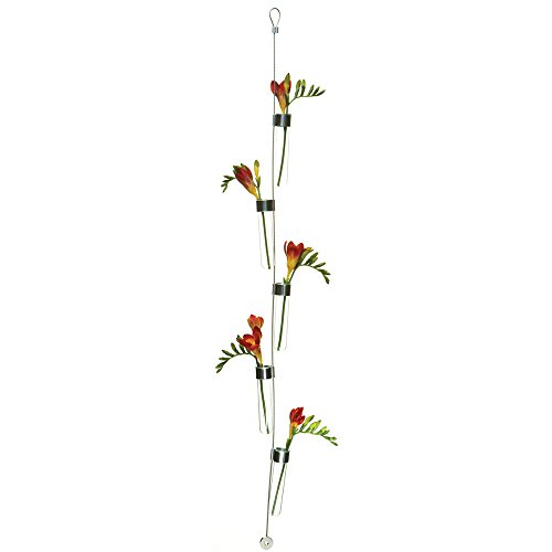 Hanging And Wall Mount Flower Bud Vase 5 Glass Cylinder Tubes For