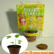TICKLE ME PLANT BIRTHDAY PARTY FAVOR, Health Care Stuffs