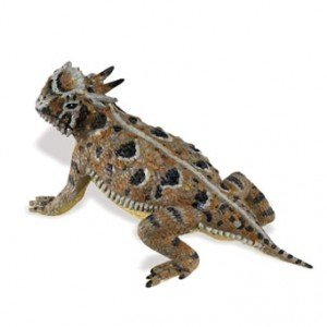 Safari Ltd  Incredible Creatures Horned Lizard