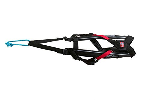Image of Non-stop dogwear Freemotion Harness: Padded for Active Dogs, Canicross, Skijoring & Bikejoring (4)