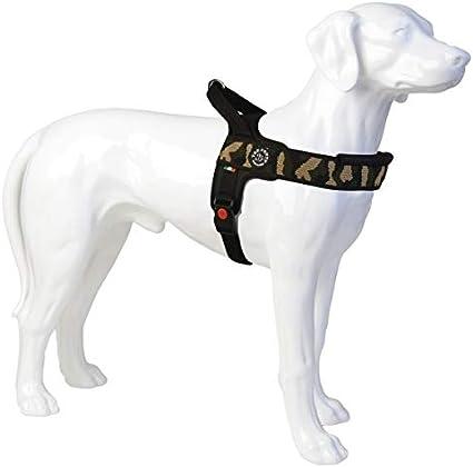 Lanco Giocattolo Hot Dog per Cani da Mordere Rumoroso