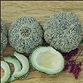 Hazzard's Seeds Cantaloupe Jenny Lind 250 seeds