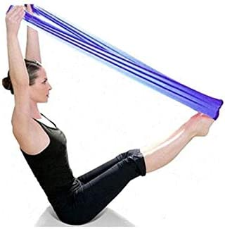 Amazon.com: CUSHY 2018 New Pilates Yoga Resistance Bands ...