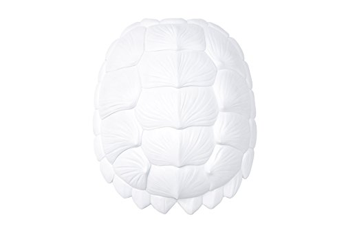 Faux Turtle Shell (Near and Deer Faux Resin Turtle Shell Wall Hanging, Large, White)