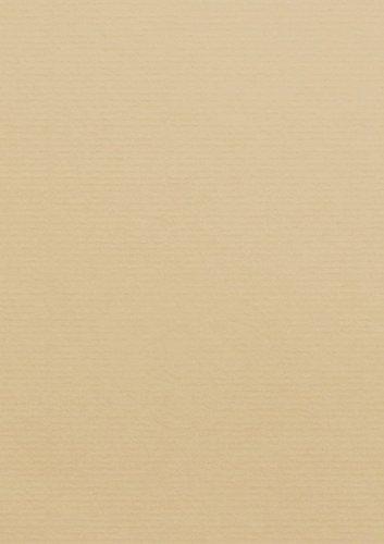 50 Stück    Artoz Serie 1001 Karten gerippt    220g qm    DIN A4, 297 x 210mm, hochwertig, baileys