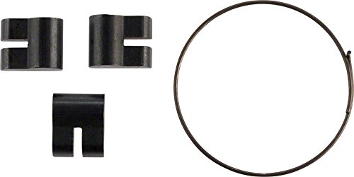 Campagnolo/ Fulcrum Freehub Body Pawl Set with Spring for HG (Campagnolo Freehub Body)