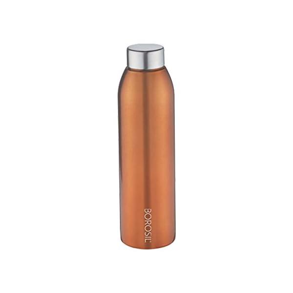 Borosil Stainless Steel Water Bottle, 750ml, Gold, Bronze,Pack of 1