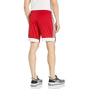 adidas Women's Tastigo 19 Shorts