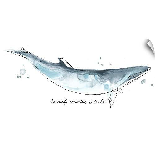 CANVAS ON DEMAND Cetacea Dwarf Minke Whale Wall Peel Art Print, 24
