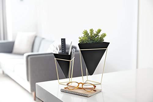 Air Umbra Trigg Desktop Planter Vase & Geometric Container-for Succulent Black/Brass Faux Plants and More Mini Cactus Set of 2