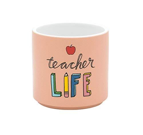 21760 Teacher Life Peach Colored 3 x 3 Inch Ceramic Matte Indoor Planter ()