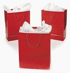 Fun Express Large Red Gift Bags -1 Dozen - Paper Christmas Gift Bags -Gift Wrap Bags