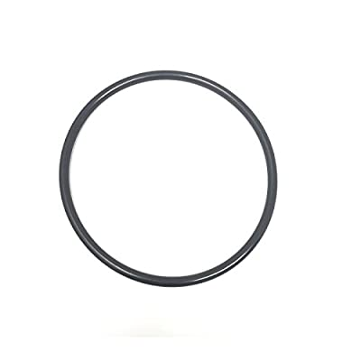 Southeastern Swimming Pool Pump Lid Cover O-Ring Replacement for Sta-Rite Dura-Glas Max-E-Glas U9-229 O-218: Garden & Outdoor