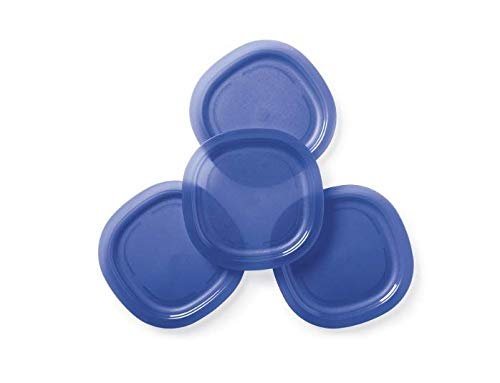 Tupperware Microwave Luncheon Plates in Tokyo Blue (9.5 Inches)