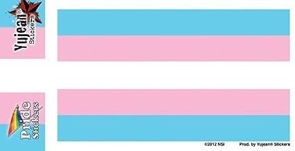 Transgender Flag Sticker//Decal NSI