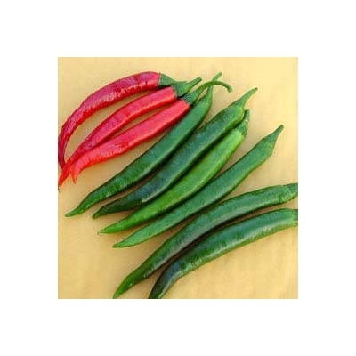 Goat Horn Hot Pepper - 20 Seeds : Vegetable Plants : Garden & Outdoor