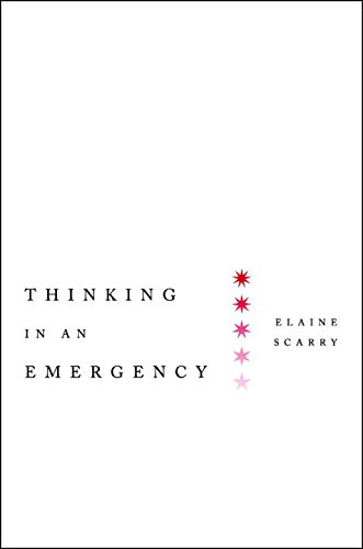 Thinking in an Emergency (Norton Global Ethics Series)