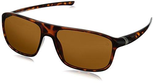 6041 Sunglasses - 4