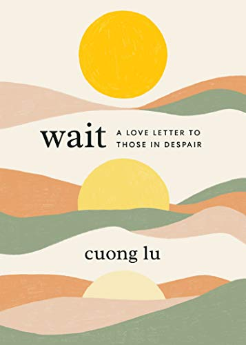 Book Cover: Wait: A Love Letter to Those in Despair
