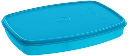 Signoraware Slim Plastic Lunch Box, T Blue Price & Reviews