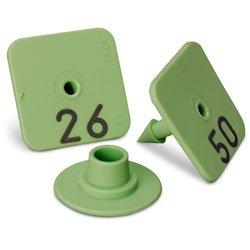 Allflex Numbered Piglet Male Tags - 26-50 Green - C31222(B)N