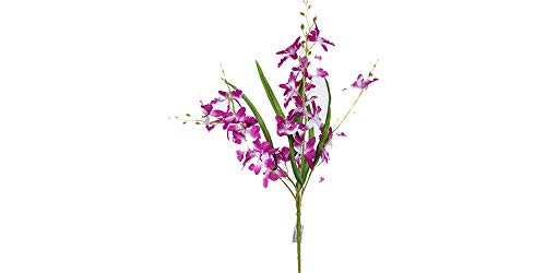 - Smart Sense Artificial Purple 21 inch Dancing Lady Orchid Liquid Illusion Silk Flower Arrangement In Single Stem(1 pc, Purple)