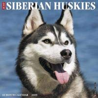 Quality 2019 JUST Siberian Huskies Calendar with Free Rock Music MEMOROBILIA (Key Chain, Pen,Magnet,Card ETC.) Calendar Planner,Calendar Wall,Pocket, Monthly,DO IT All,Gallery Edition