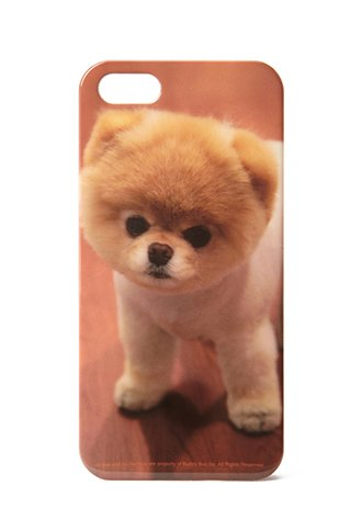 Boo Case For Iphone 5