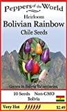 10+ BOLIVIAN RAINBOW ORNAMENTAL HOT CHILE PEPPER SEEDS