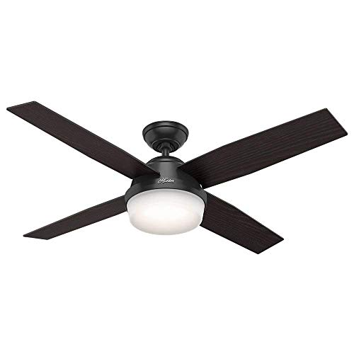 Hunter Indoor / Outdoor Ceiling Fan with light and remote control - Dempsey 52 inch, Black, 59251 (Ceiling Hunter Fan Black)