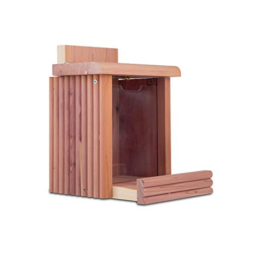 Pennington 100509197 Cedar Squirrel Snacker Feeder, 2.75 LB Capacity
