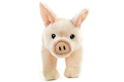 Cerdo, cerdito, lechón, cerdo de la suerte, 22 cm, peluche, color rosa: Amazon.es: Juguetes y juegos