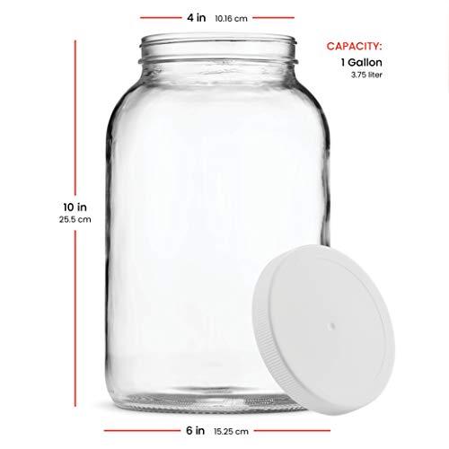 f27e149807d3 Paksh Novelty 1-Gallon Glass Jar Wide Mouth with Airtight Plastic Lid -  USDA Approved BPA-Free Dishwasher Safe Mason Jar for Fermenting, Kombucha,  ...