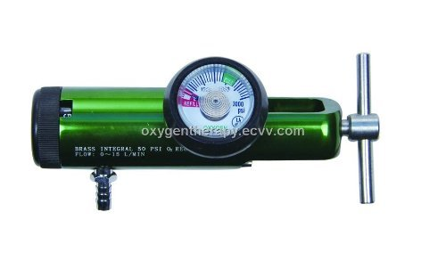 Inexpensive Oxygen Regulator (870 CGA 0-15 LPM)