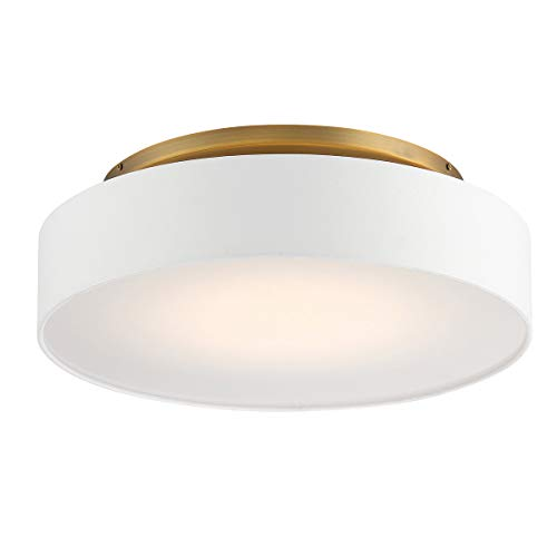 (WAC Lighting FM-13120-AB DweLED Manhattan 20in LED Flush Mount 2700K in Aged Brass Light Fixture, 20 Inches,)