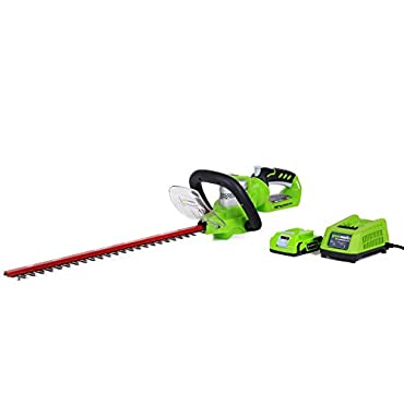 GreenWorks 22232 G-24 Li-Ion 22 Cordless Hedge Trimmer with 2AH Battery and Charger