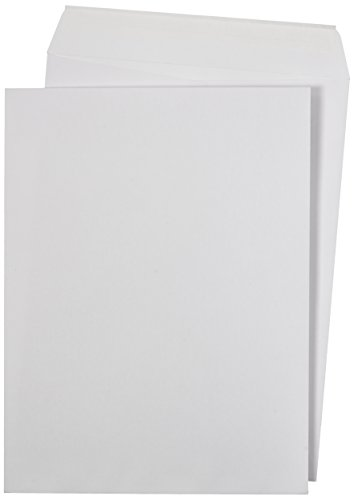 AmazonBasics Catalog Mailing Envelopes, Peel & Seal, 9x12 Inch, White, 250-Pack (White Self Sealing Catalog Envelopes)
