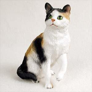 Amazon.com: Calico Cat...