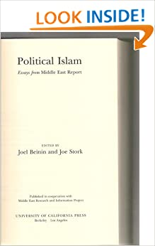 Political islam essays from middle east report