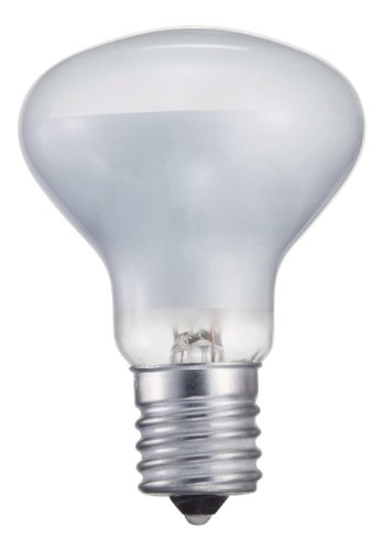 Philips 415398 Indoor Spot Light 40-Watt R14 Intermediate Base Light Bulb