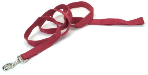 New Earth Soy Dog Leash, 6-Foot, Cranberry, My Pet Supplies