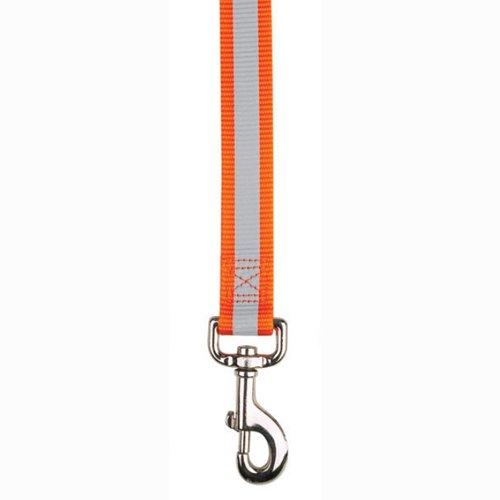 Guardian Gear Nylon Reflective Dog Lead, 1-Inch, Orange, My Pet Supplies