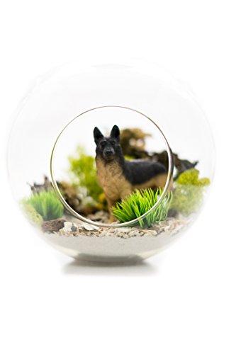 Nautical Crush Trading German Shepherd Lovers Terrarium Design Kit | Dog Breed Series | Complete DIY Gift Set | Glass Globe w/Stem (German Shepherd)