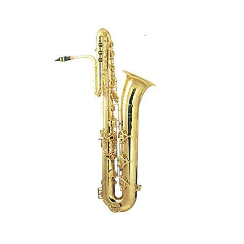 Bass Saxophone bass sax for sale coloured saxophones