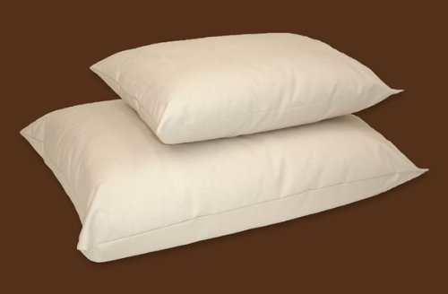 NaturePedic Organic Cotton Pillow & Pillowcase Set - Junior