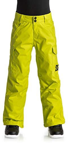DC DCSAA Big Boys Youth Banshee Insulated Snowboard Pants, Tender Shoots, 10/M