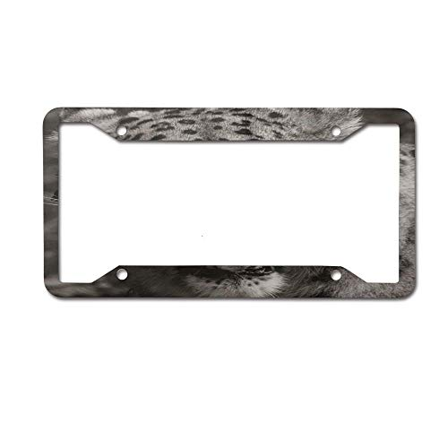 (PoppyAnthony Snow Leopard White Tiger Face Novelty License Plate Frame Aluminum License Plate Slim 4 Holes and Screws for US Canada)