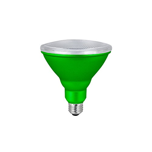Green Floodlight Bulb (LED PAR38 Colored Flood Light Bulb, 7W, (40W Equivalent), Waterproof, Indoor/Outdoor, E26 Medium Base, 120V, RoHS Listed, Green (1 Pack))