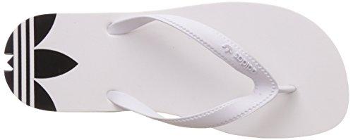 adidas Adisun, Mules Femme Blanc Cassé (Ftwr White/ftwr White/core Black)